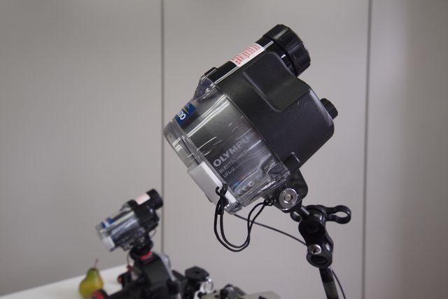 Ep231180